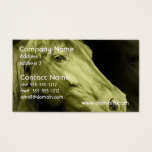 Equine Art  Business Card