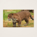 Jaguar Business Card