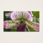 Unusual Orchid Business Cards