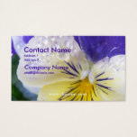 Viola Business Card